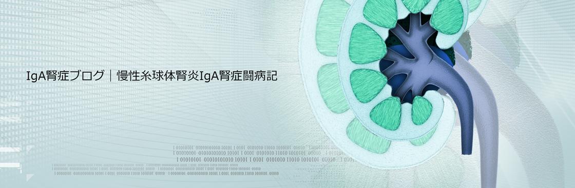 IgA腎症ブログ 慢性糸球体腎炎IgA腎症闘病記